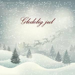 Bilde av Serviett Gledelig jul